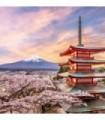 Fotomural The Treasure Tower 2P