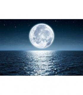 Fotomural Luna 3P