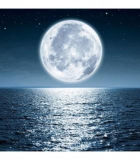 Fotomural Luna 2P