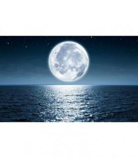 Fotomural Luna 1P
