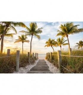 Fotomural Walk to Paradise 1P