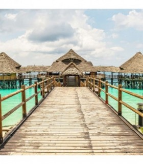 Fotomural Paradise 2P