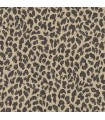 Exotics Leopardo 043
