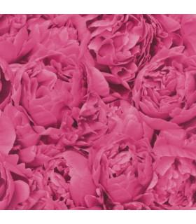 C'est la vie Rose Fucsia