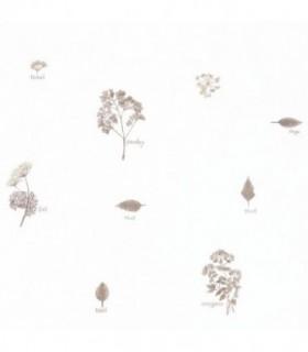 Hierbas aromáticas 100621000